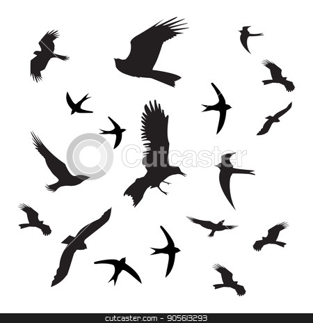 Birds silhouette black on white background stock vector clipart, Birds silhouette black on white background. Photo for your design by Kseniia