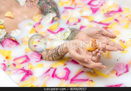 Tattooed girl relaxing in bath stock photo, Cute girl with colorful tattoos lies in the water with milk and flower petals. She holds some petals on her palms. Closeup. Indoors. Horizontal by bezikus