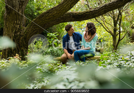 Romantic couple interacting with each other in garden stock photo, Romantic couple interacting with each other in garden on a sunny day by Wavebreak Media