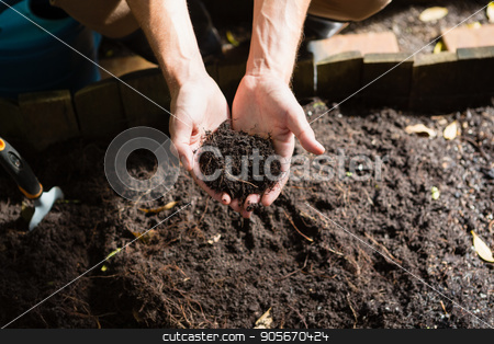Hand of man holding soil stock photo, Hand of man holding soil on a sunny day by Wavebreak Media