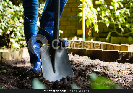 Person shoveling in the garden stock photo, Person shoveling in the garden on a sunny day by Wavebreak Media