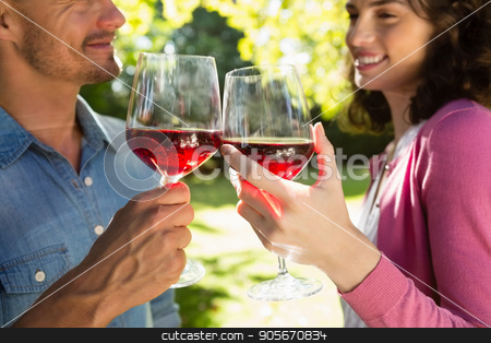 Romantic couple toasting glass of wine in park stock photo, Romantic couple toasting glass of wine in park on a sunny day by Wavebreak Media