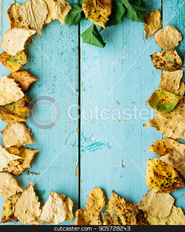 Frame from vivid colorful moody autumn background with green, red, yellow fallen leaves on blue wooden plank table. Copy space, horizontal top view, natural seasonal pattern. Thanksgiving Day concept. stock photo, autumn background, texture, yellow leaves frame an blue background by Alexandra Malyck