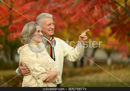 Senior couple in autumn park  stock photo, happy Senior couple posing in autumn park by Ruslan Huzau