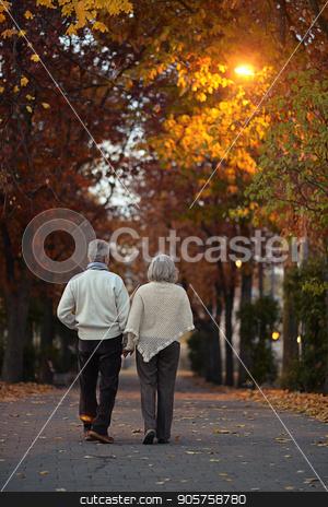 Senior couple in autumn park  stock photo, happy Senior couple walking in autumn park by Ruslan Huzau