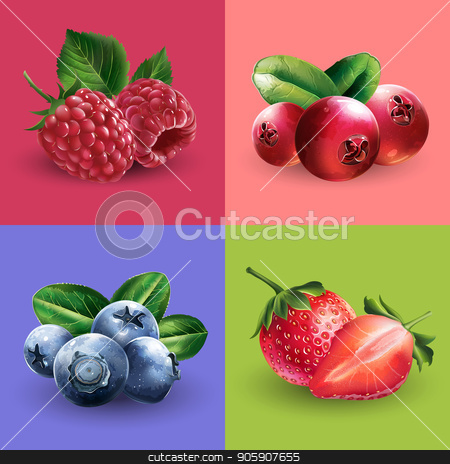 Raspberries, cranberries, blueberries and strawberries stock vector clipart, Raspberries, cranberries, blueberries and strawberries vector illustrations. by ConceptCafe