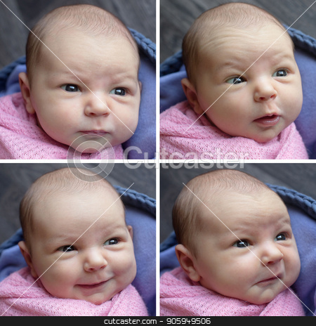 photo collage: four images of a newborn baby stock photo, photo collage: four images of a newborn baby by aaalll3110