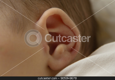 ear of a newborn baby close up stock photo, ear of a newborn baby close up by aaalll3110