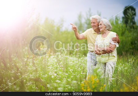 mature couple   in summer park stock photo, Loving mature couple in a summer park by Ruslan Huzau