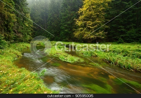 A beautifully river flowing autumn forest stock photo, A beautifully clean river flowing through a colorful autumn forest by Ondrej Vladyka