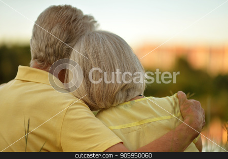 senior couple hugging stock photo, Rear view of senior couple hugging in summer park by Ruslan Huzau