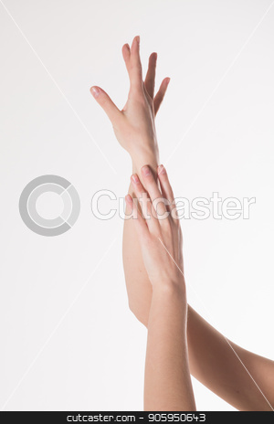 two women's hands on a white background. Empty hand isolated on white stock photo, two women's hands on a white background. Empty hand isolated on white by aaalll3110