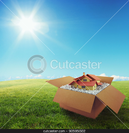 House in a cardboard box. Concept of buying a dwelling. 3D Rendering stock photo, House in a cardboard box on a green field under the blue sky. 3D Rendering by Federico Caputo