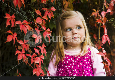 Cute young girl against red leaves. stock photo, Portrait of a young girl agains leaves showing fall/autumn colors  by txking