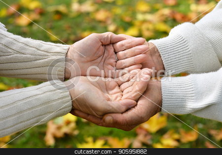 Elderly couple holding hands stock photo, elderly couple holding hands in autumn park by Ruslan Huzau