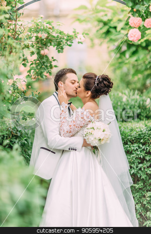 Happy kissing newlyweds under the rose arch. stock photo, Happy kissing newlyweds under the rose arch by Andrii Kobryn