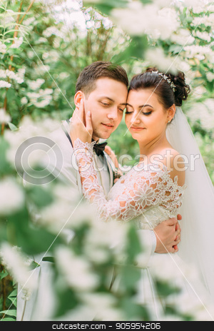 Sensitive outdoor portrait of the newlyweds in the garden. The bride strokes the face of the groom. stock photo, Sensitive outdoor portrait of the newlyweds in the garden. The bride strokes the face of the groom by Andrii Kobryn