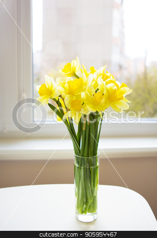 Posy of bright yellow daffodils on white wooden table stock photo, Posy of bright yellow daffodils on white wooden table. by Sergiy Artsaba