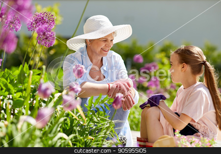 grandmother and girl with flowers at summer garden stock photo, gardening, family and people concept - happy grandmother and granddaughter with flowers at summer garden by Syda Productions