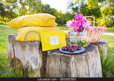 Picnic on nature stock photo, Bright and delicious picnic in nature-a healthy day by Sergiy Artsaba