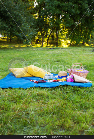 Picnic on nature stock photo, Bright summer picnic-tasty food and bright emotions by Sergiy Artsaba