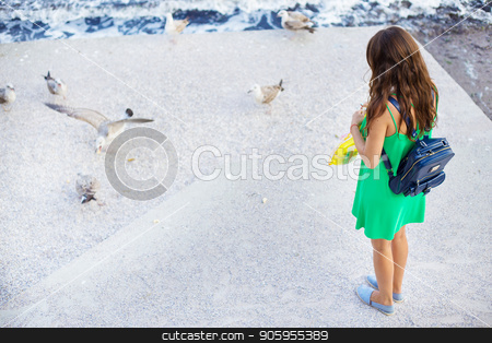 A young girl is feeding a flock of seagulls. Sun, summer, sea. stock photo, A young girl is feeding a flock of seagulls. Sun, summer, sea by Sergiy Artsaba