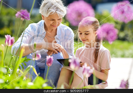 grandmother and girl with tablet pc at garden stock photo, family, leisure and technology concept - happy grandmother and granddaughter with tablet pc computer at summer garden by Syda Productions