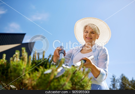 senior gardener with hedge trimmer at garden stock photo, gardening, trimming and people concept - happy senior woman or gardener with hedge trimmer at summer garden by Syda Productions
