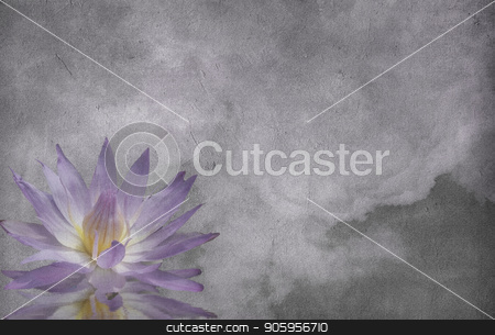 Lotus Flower stock photo, Lotus on grunge cloud background by Bruce Rolff