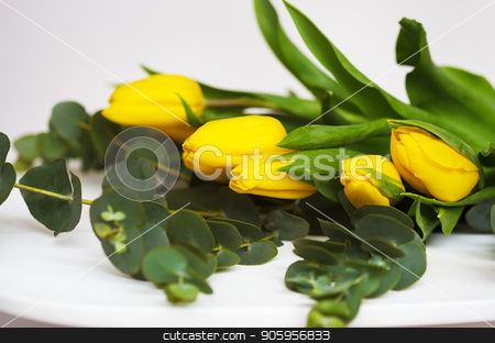beautiful yellow tulips with eucalyptus branches on a white table stock photo, beautiful yellow tulips with eucalyptus branches on a white table by Sergiy Artsaba
