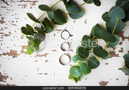beautiful old ring on a white table with a sprig of eucalyptus stock photo, beautiful old ring on a white table with a sprig of eucalyptus by Sergiy Artsaba