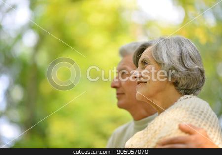 beautiful senior couple posing stock photo, Portrait of beautiful senior couple posing outdoors by Ruslan Huzau