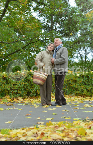 Senior couple posing stock photo, happy Senior couple posing in autumn park by Ruslan Huzau