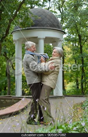 beautiful caucasian senior couple dancing stock photo, portrait of beautiful caucasian senior couple dancing  in the park by Ruslan Huzau