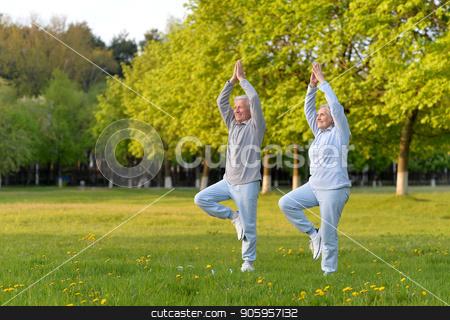 fit senior couple exercising stock photo, Happy fit senior couple exercising in  park by Ruslan Huzau