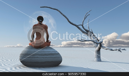 Desert Meditation stock photo, Woman meditates sitting on stone in white sands landscape by Bruce Rolff