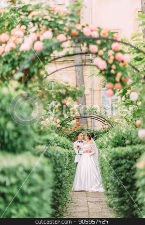 Full-length view of the cheerful newlyweds spending time in the lovely rose garden. stock photo, Full-length view of the cheerful newlyweds spending time in the lovely rose garden by Andrii Kobryn