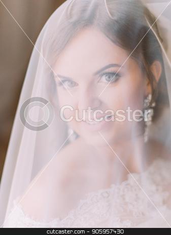 Close-up portrait of the smiling bride under the veil. stock photo, Close-up portrait of the smiling bride under the veil by Andrii Kobryn