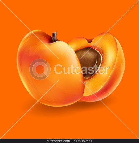 Apricot and slices stock vector clipart, Apricot and cut slices on a bright orange background. by ConceptCafe