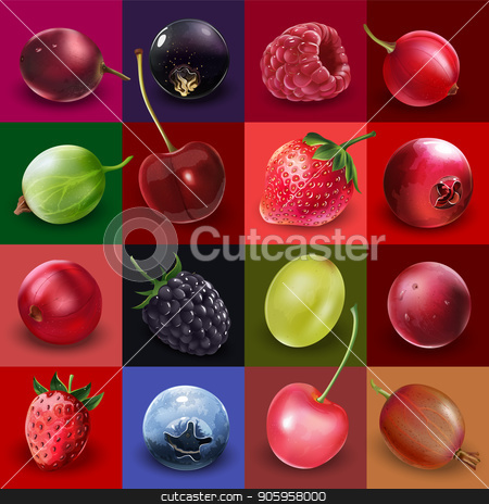 Collection of Berries stock vector clipart, Cherries, strawberries, gooseberries, blueberries, raspberries, currants, blackberries, grapes and cranberries illustrations. by ConceptCafe