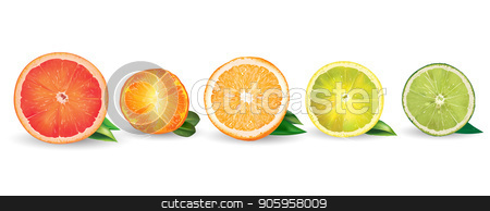 Orange, lemon, citrus, mandarin, grapefruit and lime stock vector clipart, Lemon, orange, citrus, mandarin, grapefruit, lime on a background. by ConceptCafe
