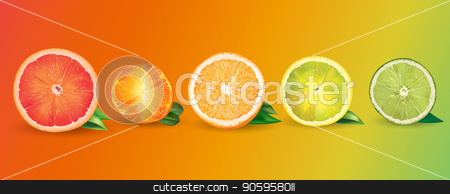 Orange, lemon, citrus, mandarin, grapefruit and lime stock vector clipart, Lemon, orange, citrus, mandarin, grapefruit, lime on a background. by ConceptCafe