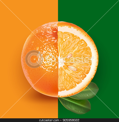 Orange and leaves stock vector clipart, Orange and leaves on a green and orange background. by ConceptCafe