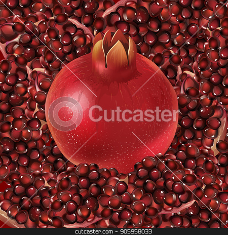 Pomegranate and grain stock vector clipart, Pomegranate and grain dark red saturated background. by ConceptCafe