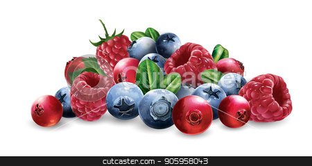 Raspberries, cranberries, blueberries and strawberries stock vector clipart, Raspberries, cranberries, blueberries and strawberries on a white background. by ConceptCafe