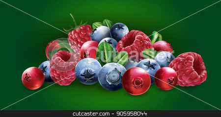 Raspberries, cranberries, blueberries and strawberries stock vector clipart, Raspberries, cranberries, blueberries and strawberries on a green background. by ConceptCafe