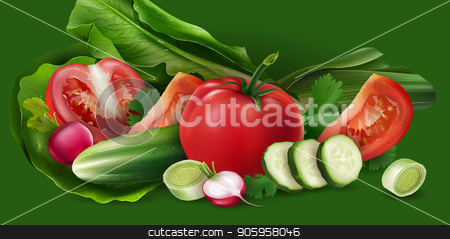 Tomatoes, cucumber and salad stock vector clipart, Tomatoes, cucumber and salad on green background. by ConceptCafe