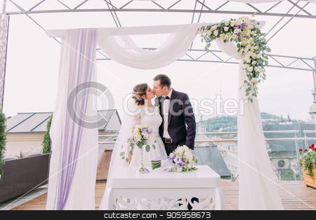 Kissing newlywed couple under the wedding arch. stock photo, Kissing newlywed couple under the wedding arch by Andrii Kobryn