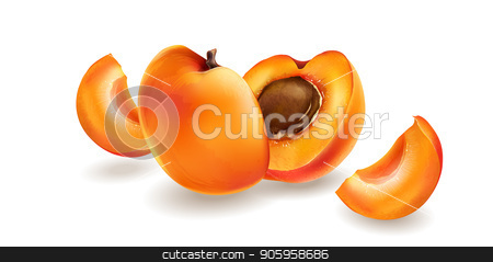 Apricot and slices stock vector clipart, Apricot and cut slices on a bright white background. by ConceptCafe