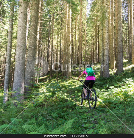 Active sporty woman riding mountain bike on forest trail . stock photo, Active sporty woman riding mountain bike on demanding forest trail. by kasto
